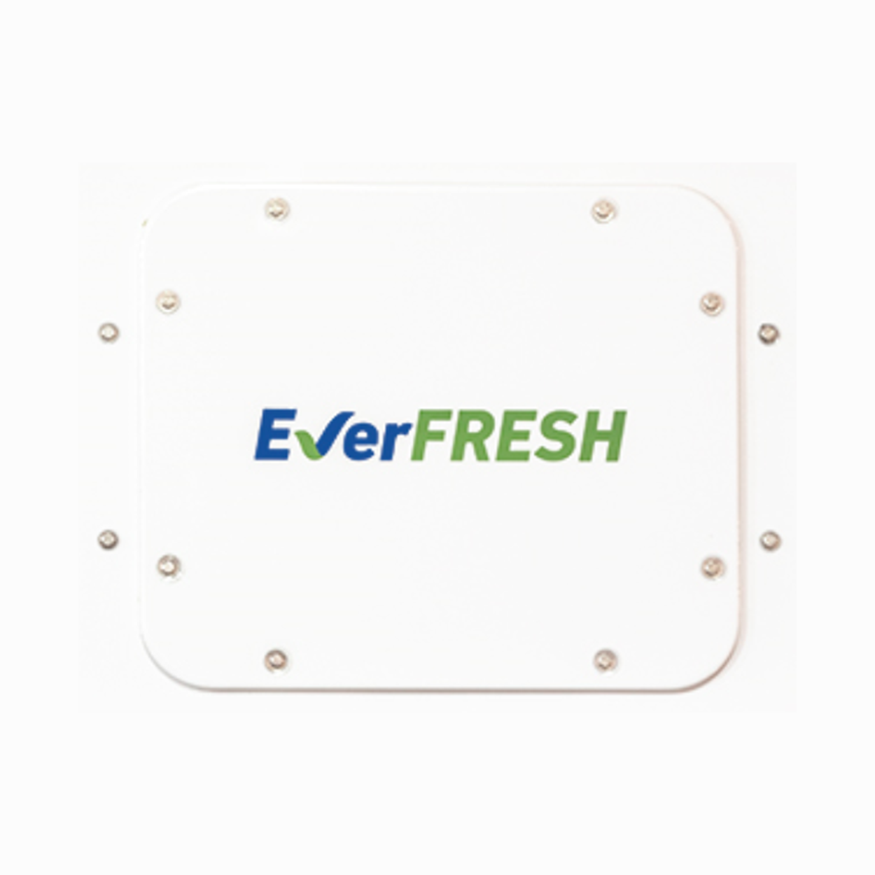everfresh-photo-5