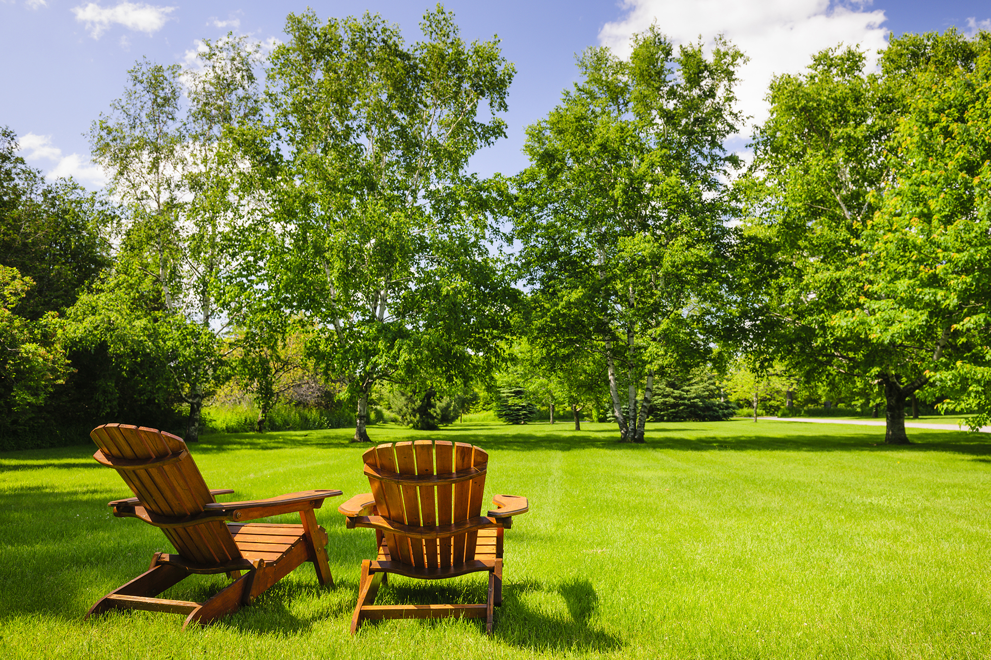 two-chairs-green-grass-and-trees