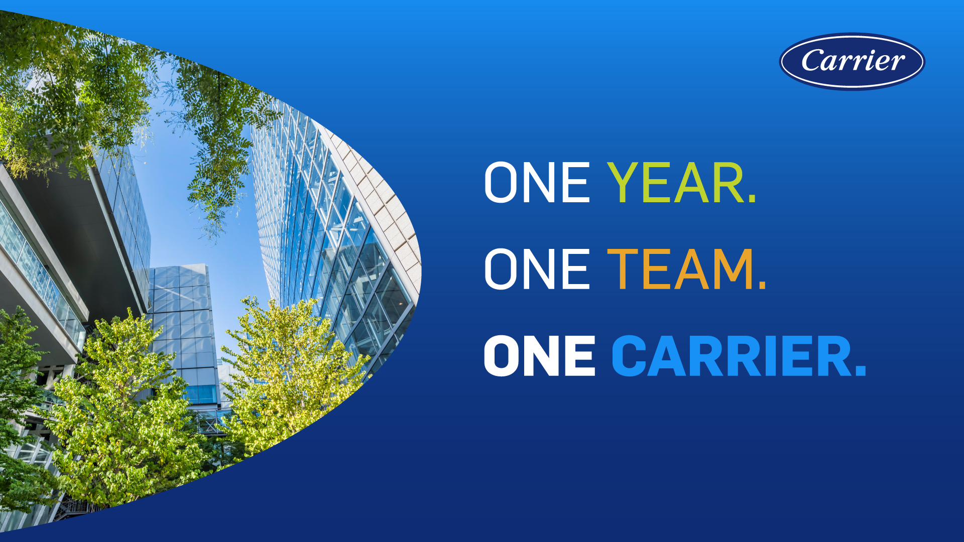 Carrier One Year Anniversary
