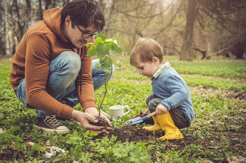 father-son-planting-tree